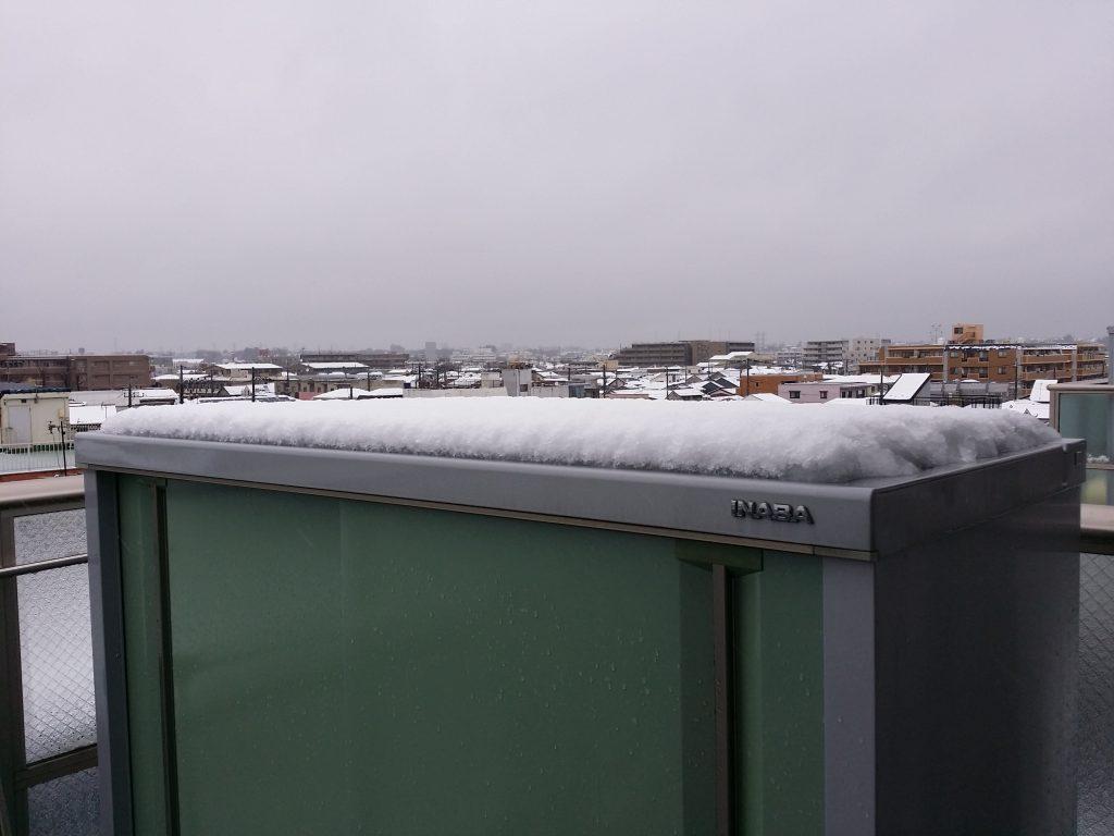 今年の初雪!ちょっと積もってます