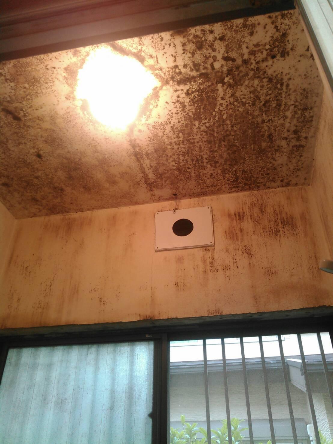 浴室 天井 ケイカル板